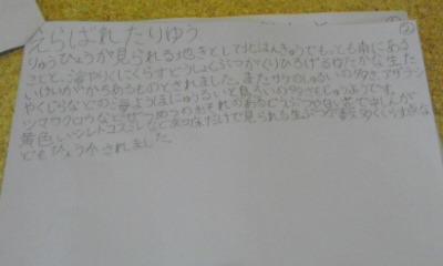 120826_0548~03.jpg